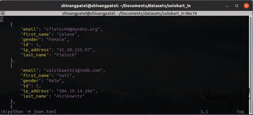 sample json formated file